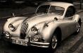 Jaguar_Oldtimer_cat_katze_XK_Auto_Automobil